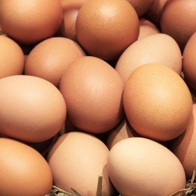 Der blev brugt 145.000 æg til at lave verdens største omelet.